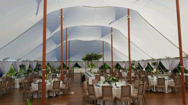 Where to find 59 x79  Aurora Sheer Top Pole Tent in New Britain