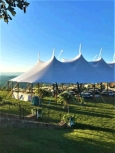 Rental store for 59 x99  Aurora Sheer Top Pole Tent in New Britain PA